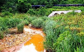 Эту воду текущую неподалеку от свалки бытовых отходов назвать живой не повернется язык.