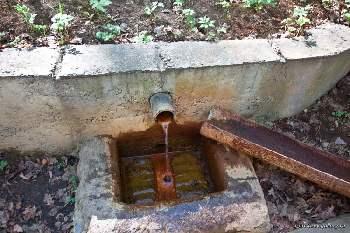 Живая вода - эту воду истекающую сквозь тонны отложений умерших животных считают целебной и омолаживающей.