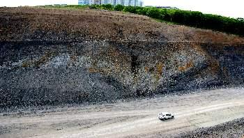 Вскрытые слои морских отложений возрастом более 200 милионов лет.