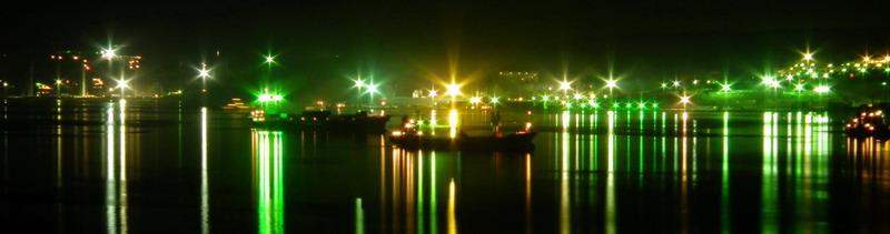 Пролив босфор восточный - ночная фото панорама.